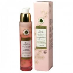 Sanoflore rosa angelica concentré d'éveil ré-hydratant visage et yeux 30ml