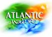 Atlantic-nature