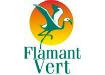 Flamant-vert